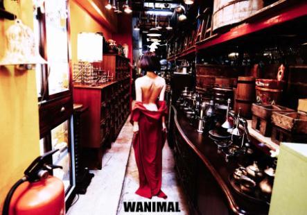 官方出品王动WANIMAL超唯美泰国行163P+1V